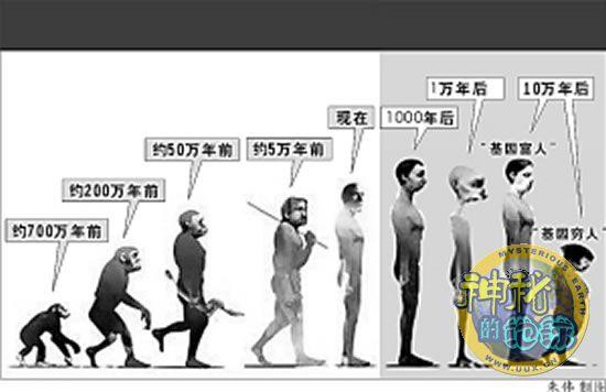 <em>人类</em>未来将会进化成什么样?