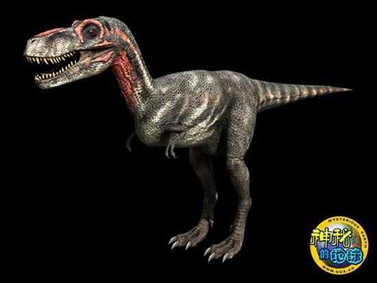 恐龙 暴龙/三分之一恐龙物种并不存在都是误认惹的祸...