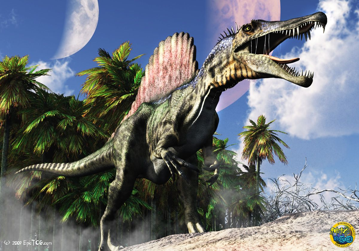 埃及棘背龙vs霸王龙_雷克斯暴龙素材鲨齿龙雷克斯暴龙vs埃及棘龙