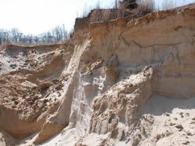 古河道泥沙沉积中的贝类