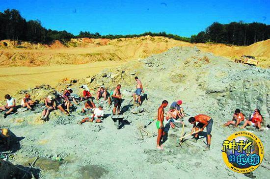 欧洲 发现 首个/科学家在匈牙利发现了欧洲首个角龙化石。(图片提供:Gábor...