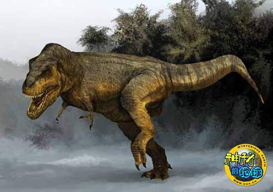 暴龙 动物 世界 肉食 霸王龙/暴龙归来:霸王龙不仅只是处在肉食食物链顶端