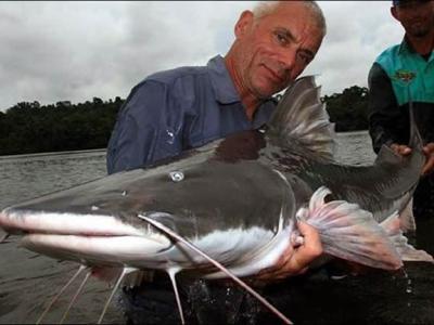 Discovery探索频道《河中巨怪》——亚马逊食人巨鯰
