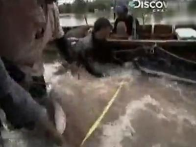 Discovery探索频道《河中巨怪》——远方来的蛇头怪