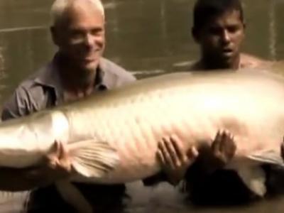 Discovery探索频道《河中巨怪》——欧洲吃人水怪