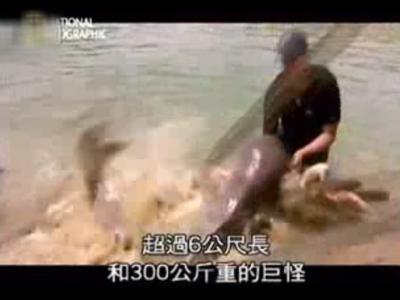 《美国国家地理频道》寻找超级大鱼——哲罗鱼