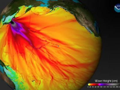 日本强烈海啸24小时内传播路径图