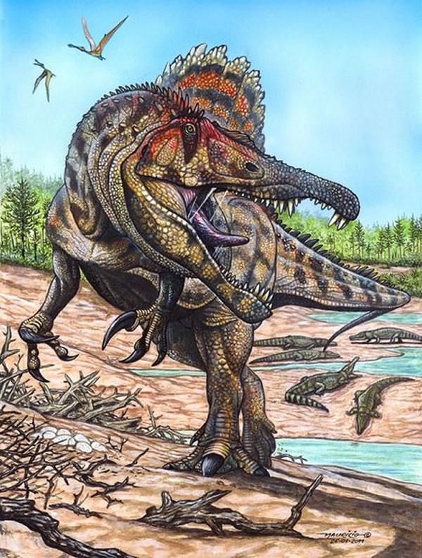 恐龙/奥沙拉龙复原图