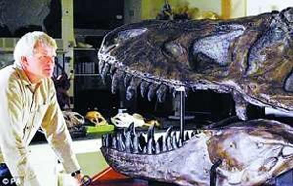 恐龙 霸王龙/人们一直认为,霸王龙这种顶级捕食性恐龙异常危险,并且喜欢...