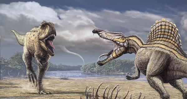诺曼/摩洛哥的晚白垩世森诺曼期生活着已知最大的兽脚类食肉恐龙棘背...