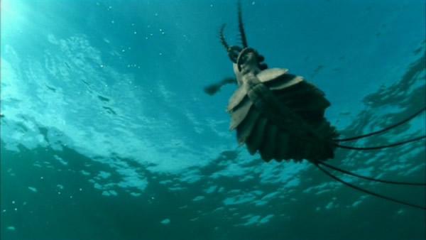 海洋霸主之寒武纪巨虫——奇虾