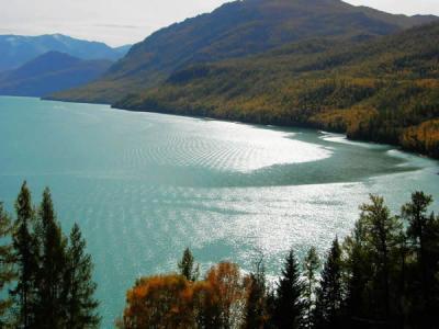 新疆生态学会理事长袁国映:喀纳斯湖存在百米长大鱼