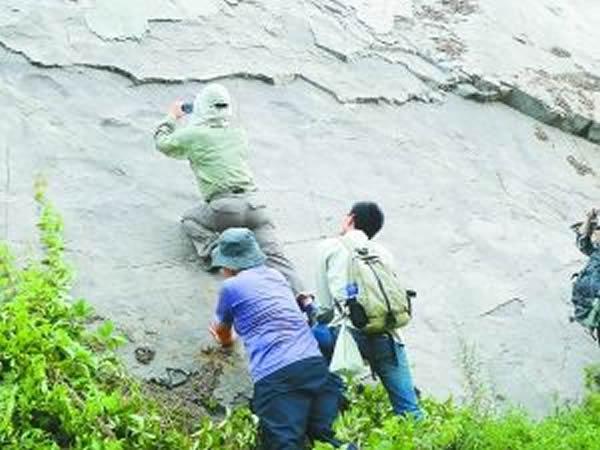 延庆发现恐龙足迹化石的背后