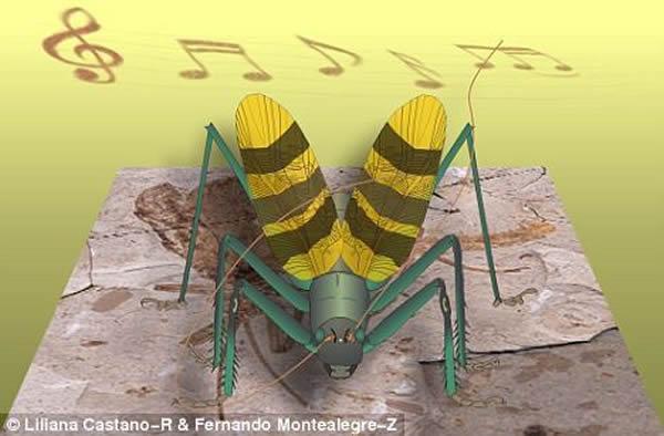 中国昆虫化石再现1.65亿年前蟋蟀叫声