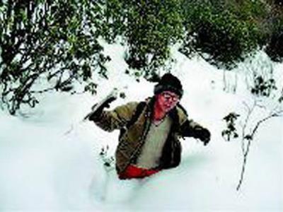 陕西3名地质队员可可西里失踪11天