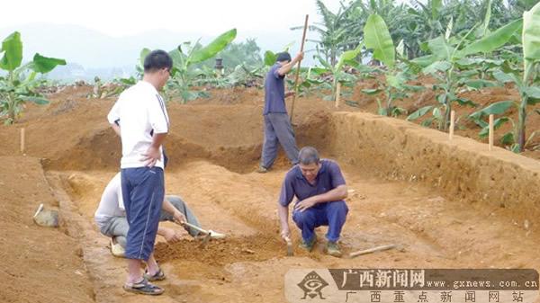 南宁变态美女日本漫画市坛洛镇发现新石器时代晚期遗址