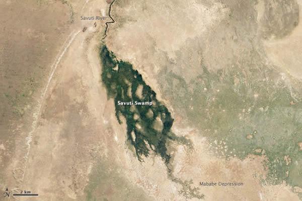 博茨瓦纳萨维缇河2012年不同寻常的洪水景象