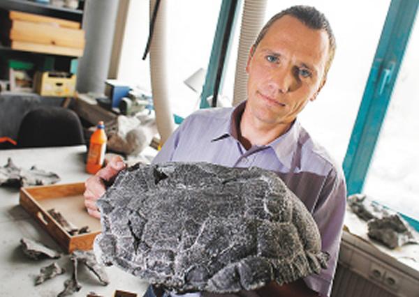 波兰发现最久远的乌龟化石 距今约2揍屁股日本漫画 胶衣Sm亿5千