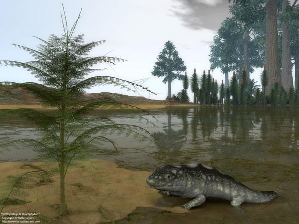最早从海洋迁徙到陆地的四足动物——鱼石螈