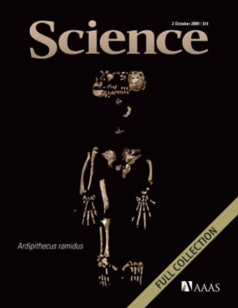 """地猿始祖种""""阿尔迪"""":440万年前生活在"""