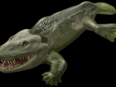 最古老陆生四足动物骨架的3D重构或颠覆现有理论