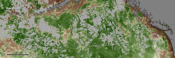 第二张图显示了Kasatochi火山爆发后受影响海域中当月叶绿素的增长情况