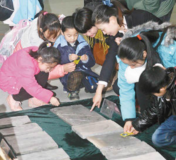 陕西自然博物馆获捐赠155件化石