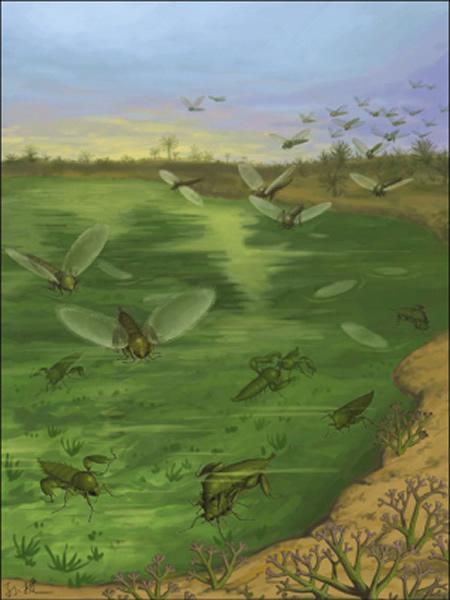 恐怖虫生态复原图