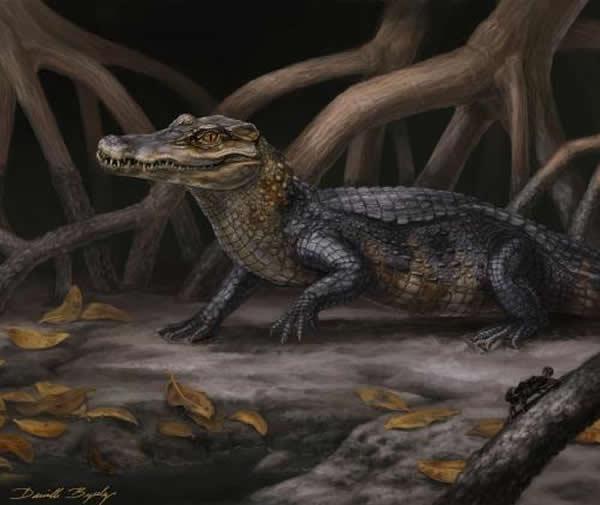 凯门鳄新种Culebrasuchus mesoamericanus, gen. et sp. nov.的复原图