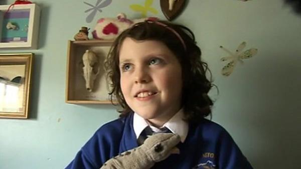英国怀特岛9岁小女孩发现新翼龙化石