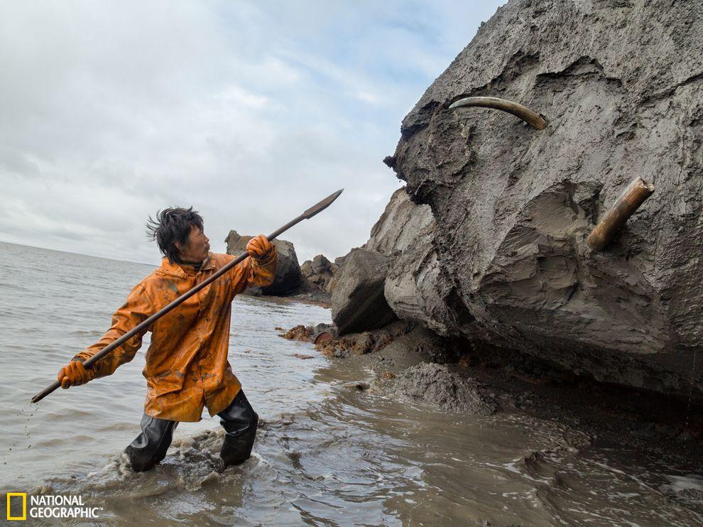 西伯利亚/西伯利亚猛犸象牙猎人