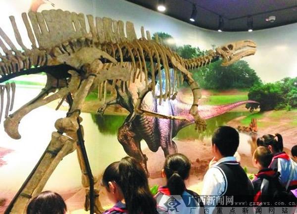 小小讲解员在广西自然博物馆内参观