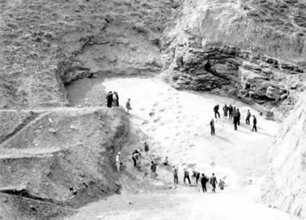 刘家峡地质公园中大量恐龙足印化石面临风化