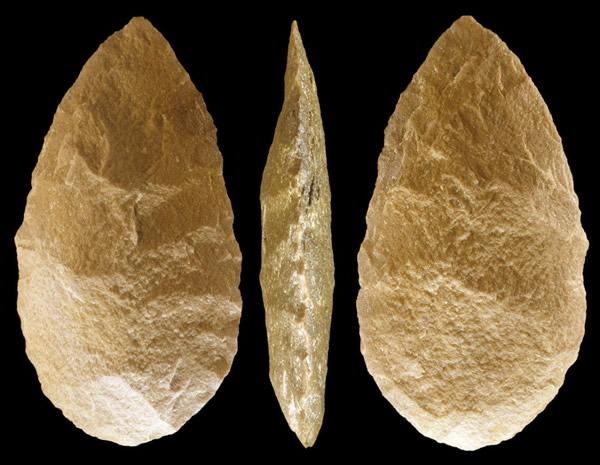人类对石器工具的使用促使了手骨的出现