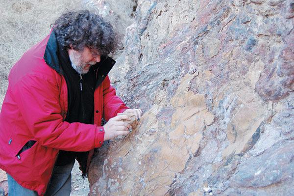法国考古学者艾瑞克·博伊达眼中的早期人类起源与扩散