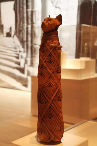 """在新加坡滨海湾金沙艺术科学博物馆展出的""""木乃伊:古墓之谜""""古埃及文物展中,展出的一具猫咪木乃伊。"""