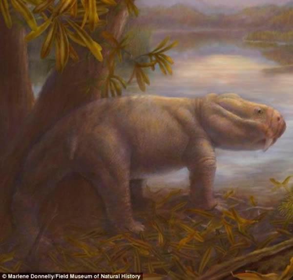发现2.52亿年前大灭绝事件后的恐龙祖先化石
