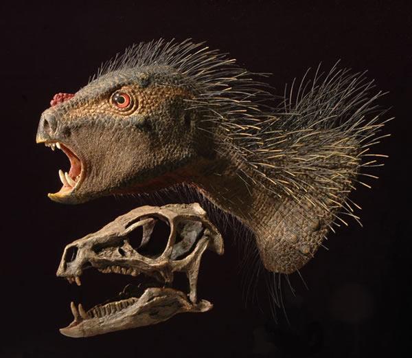 非洲厚颚龙