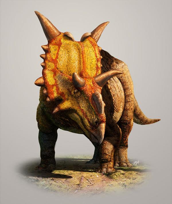 新种四角恐龙
