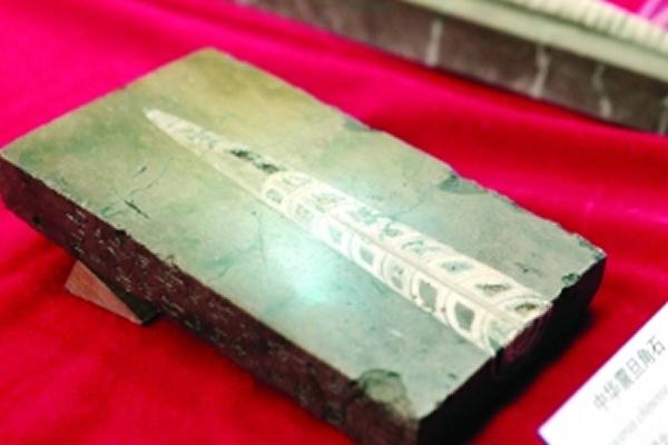 黄庭坚收藏的中华震旦角石
