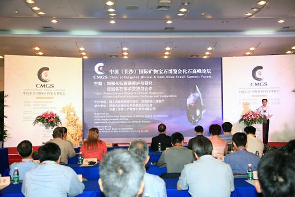 中国(长沙)国际矿物宝石博览会化石高峰论坛