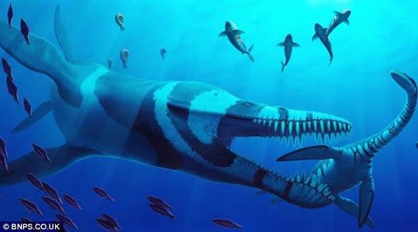 英国化石收藏家花费5年时间完成巨型史前海洋爬行动物头骨化石修复工作