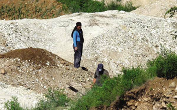 几名男子正在盗挖化石