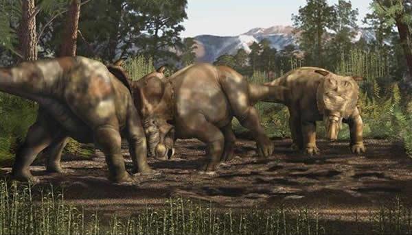 艺术家对Pachyrhinosaurus perotorum的渲染图显示了恐龙用头互相顶对方。