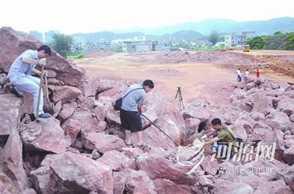 河源新發現恐龍骨骼化石