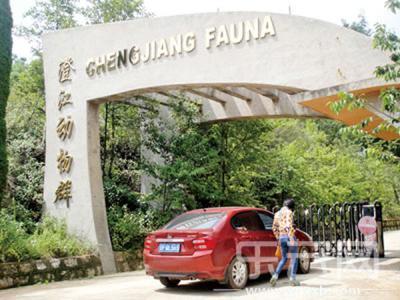 澄江化石地建设排名全国倒数第一