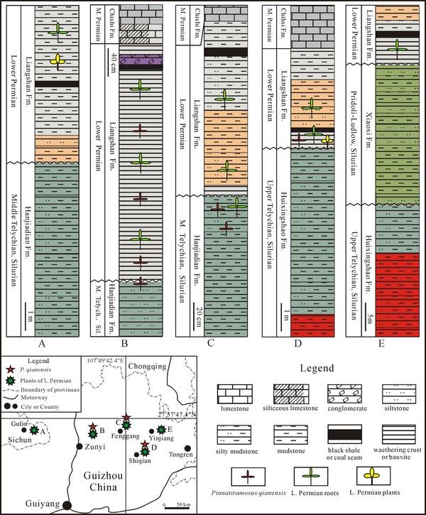 不同剖面地层及其化石产出对比图