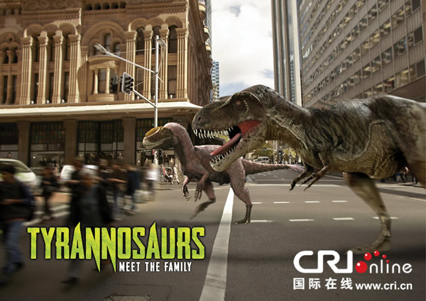 澳大利亚博物馆为此次展览制作了多幅精美的图片资料