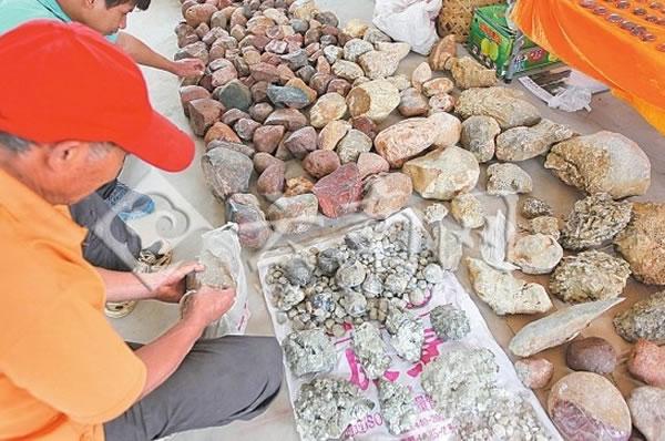 大量被农户采挖的古生物化石在现场进行交易
