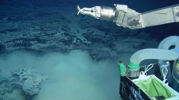 日本载人潜水器「深海6500」发现了「巴西版亚特兰蒂斯」!